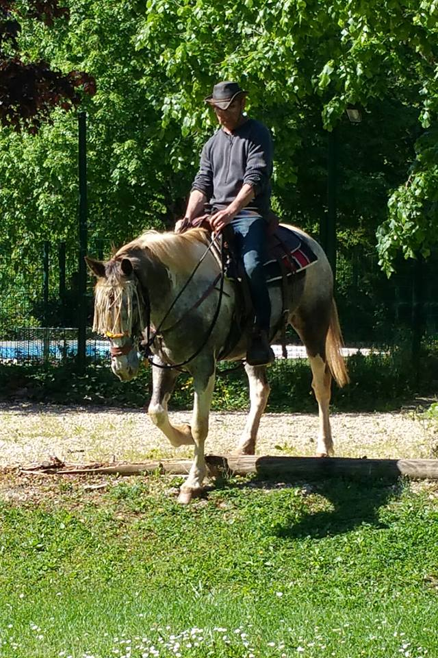 Educateur , comportementaliste équin Lot Midi-Pyrénées